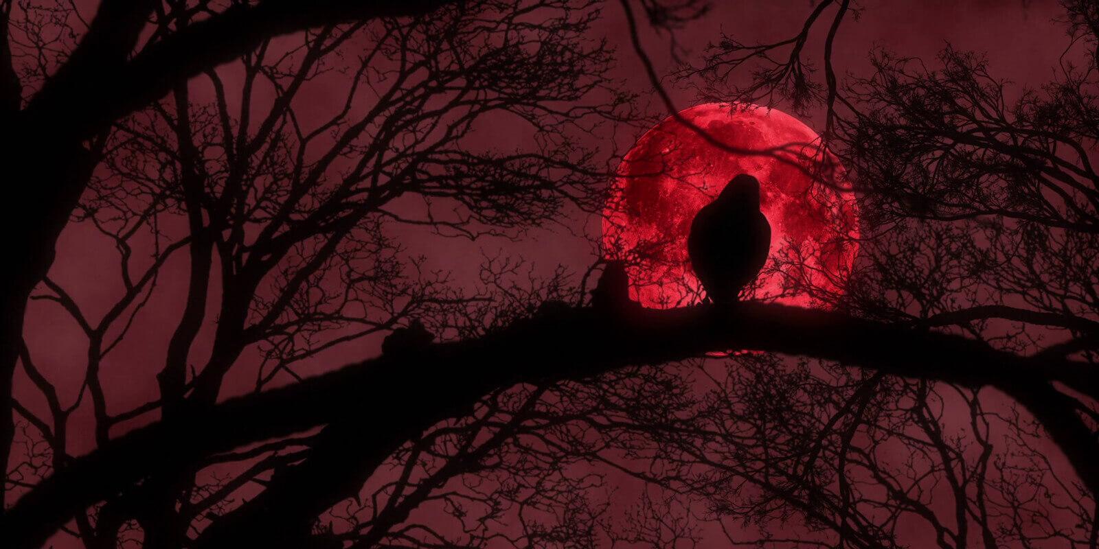 Punane kuu – kuidas õppida tundma oma tsüklit?